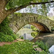 3311364-a-stone-bridge-gapstow-bridge-in-central-park-ny-stock-photo